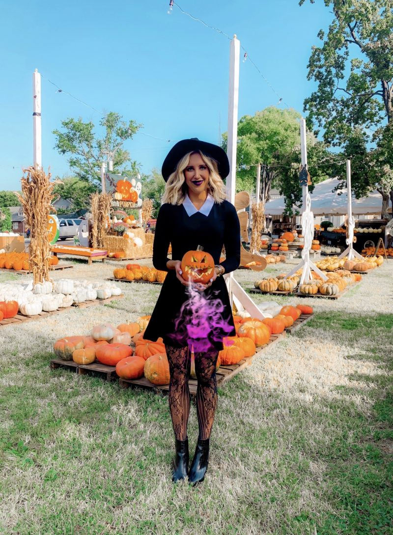 60+ Fall & Halloween Captions for Instagram